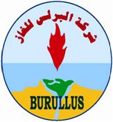 Image result for Burullus Gas Company